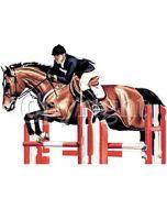Perstransfer: Horse  & Rider jumper - H2