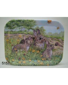 Dienblad konijndesign