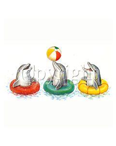 Perstransfer: Spelende dolfijnen - H2