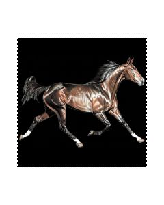 Perstransfer: Running horse dark brown - H2